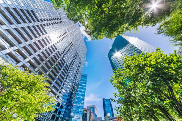 新鮮な緑と建物グループ - 緑 ビル ストックフォトと画像
