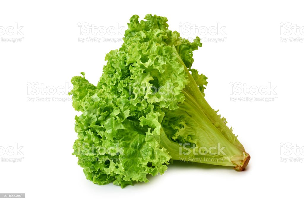 fresh green and raw Lettuce isolated on white background stock photo