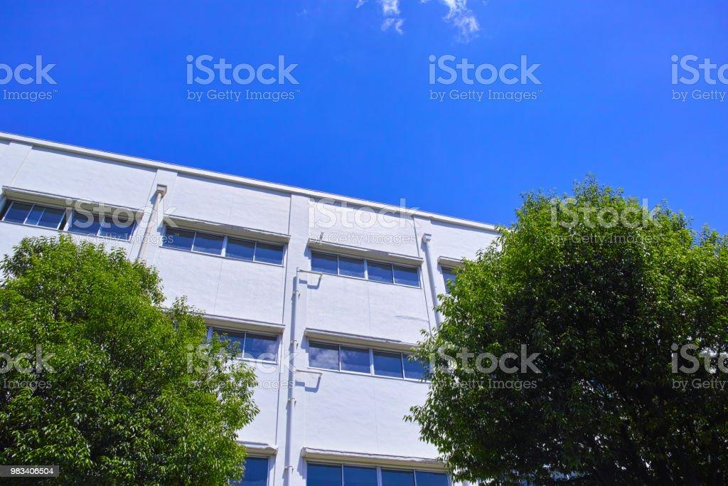 新鮮な緑と校舎 ストックフォト