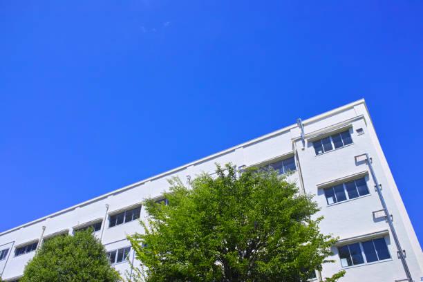 新鮮な緑と校舎 - 小学校 ストックフォトと画像