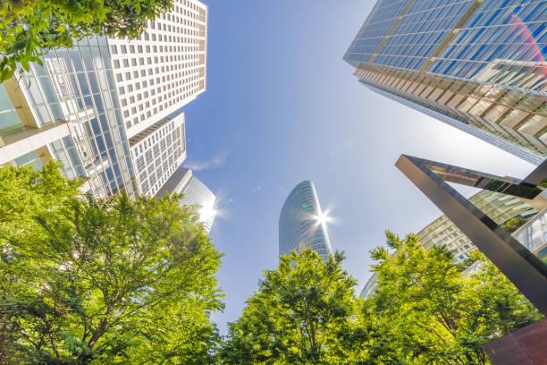 新鮮な緑と高層ビル - 緑 ビル ストックフォトと画像