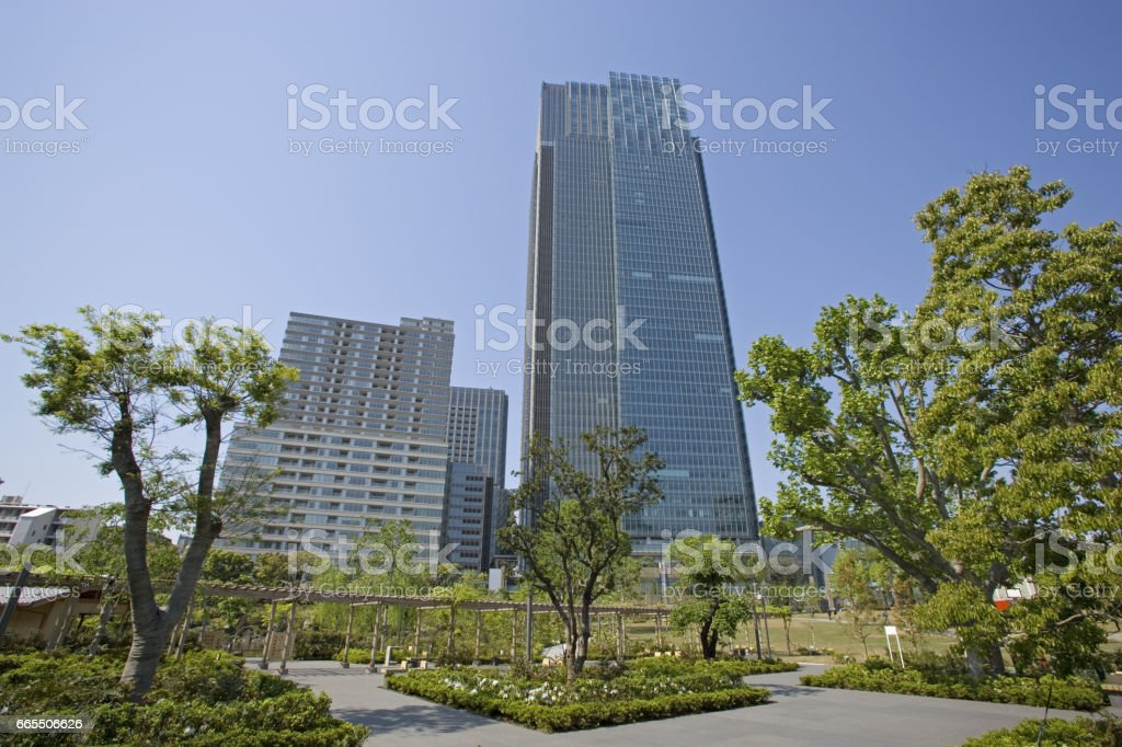 Fresh green and Tokyo Midtown stock photo