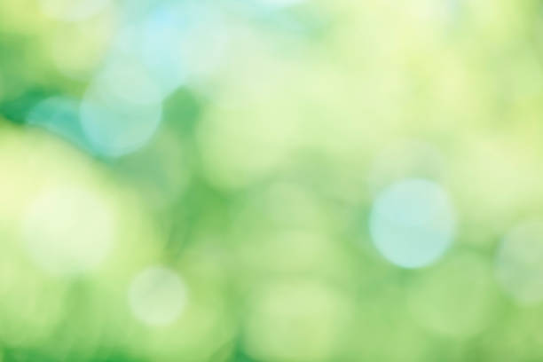 fresh green background - kelly green stock pictures, royalty-free photos & images