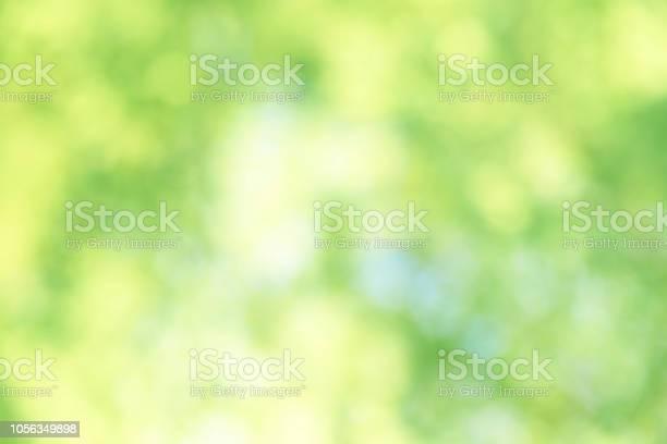 Photo of Fresh green background