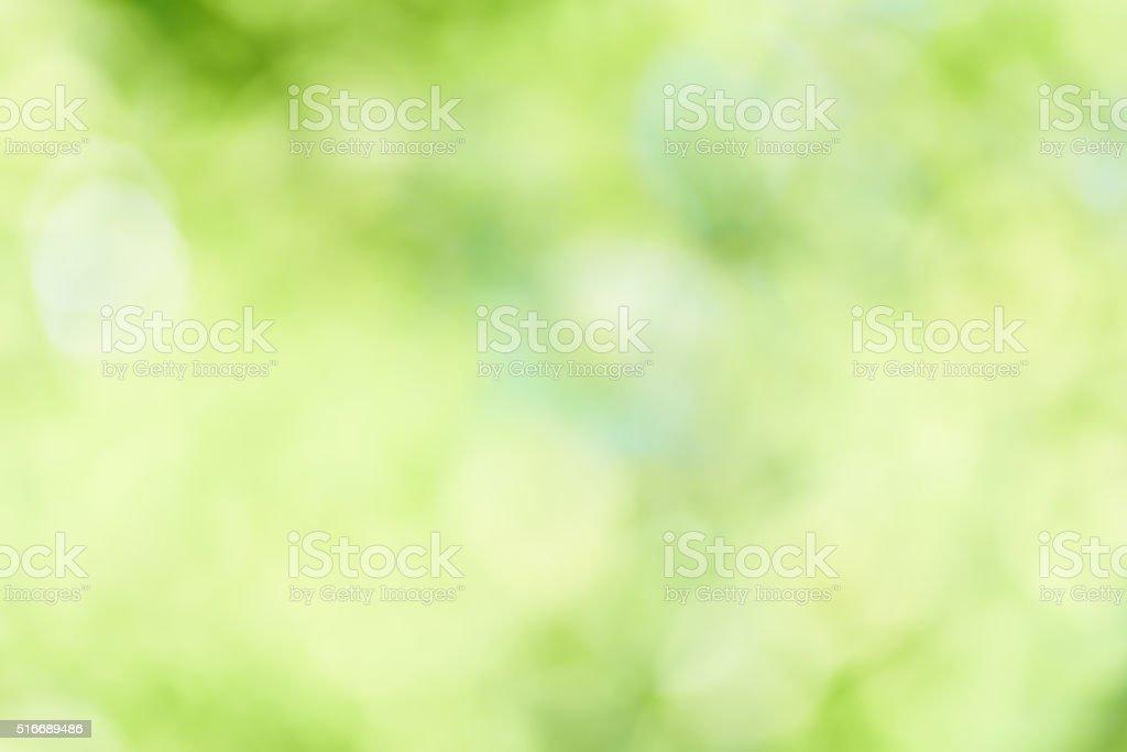 Fundo verde fresco - foto de acervo