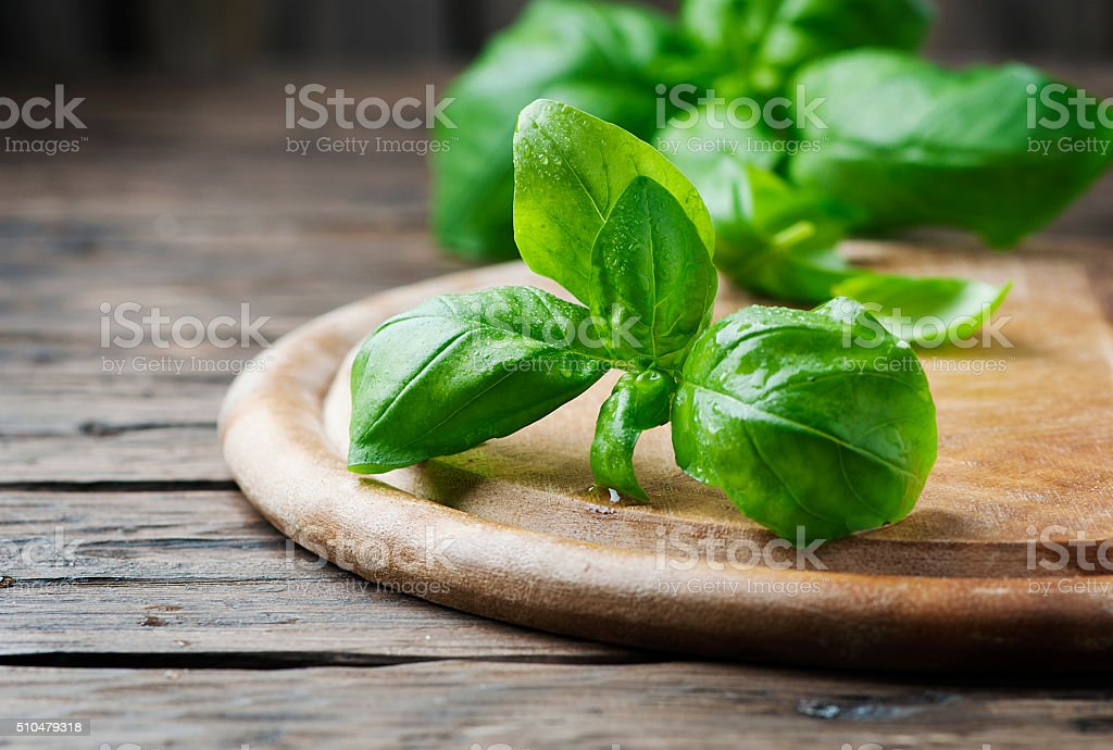 Fresh green basil on the wooden table stock photo