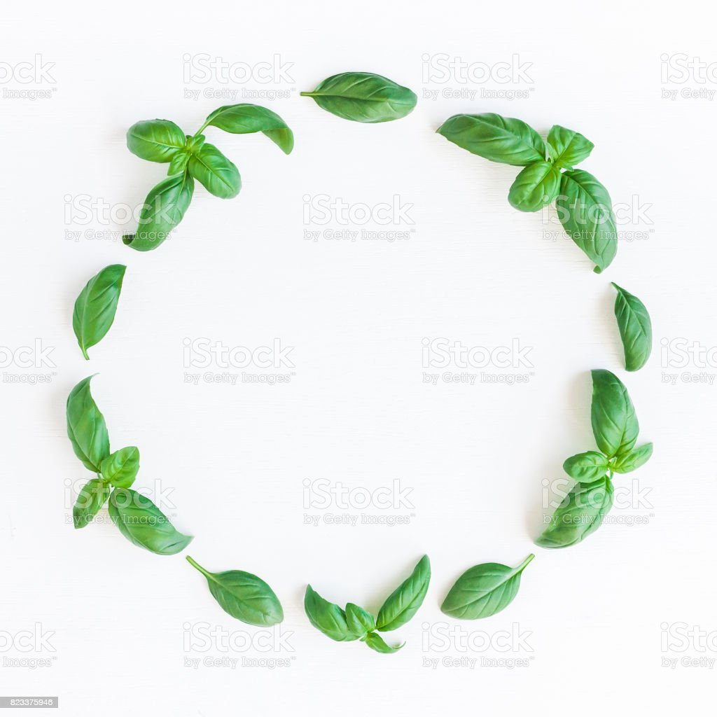 Fresh green basil on white background. Flat lay, top view stock photo