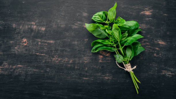 Fresh green basil. Top view. On the background. Free space for text. Fresh green basil. Top view. On the background. Free space for text. basil stock pictures, royalty-free photos & images