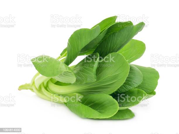 fresh green bok choy,chinese cabbage or pak chai isolated on white background