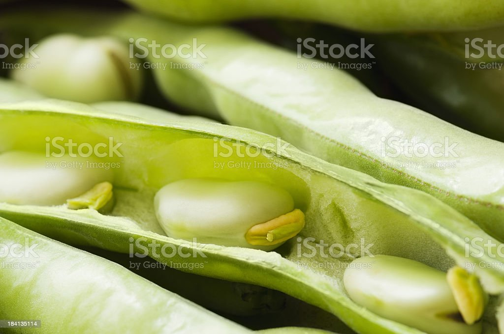 Fresh green broad beans in opened bean pods royalty-free stock photo