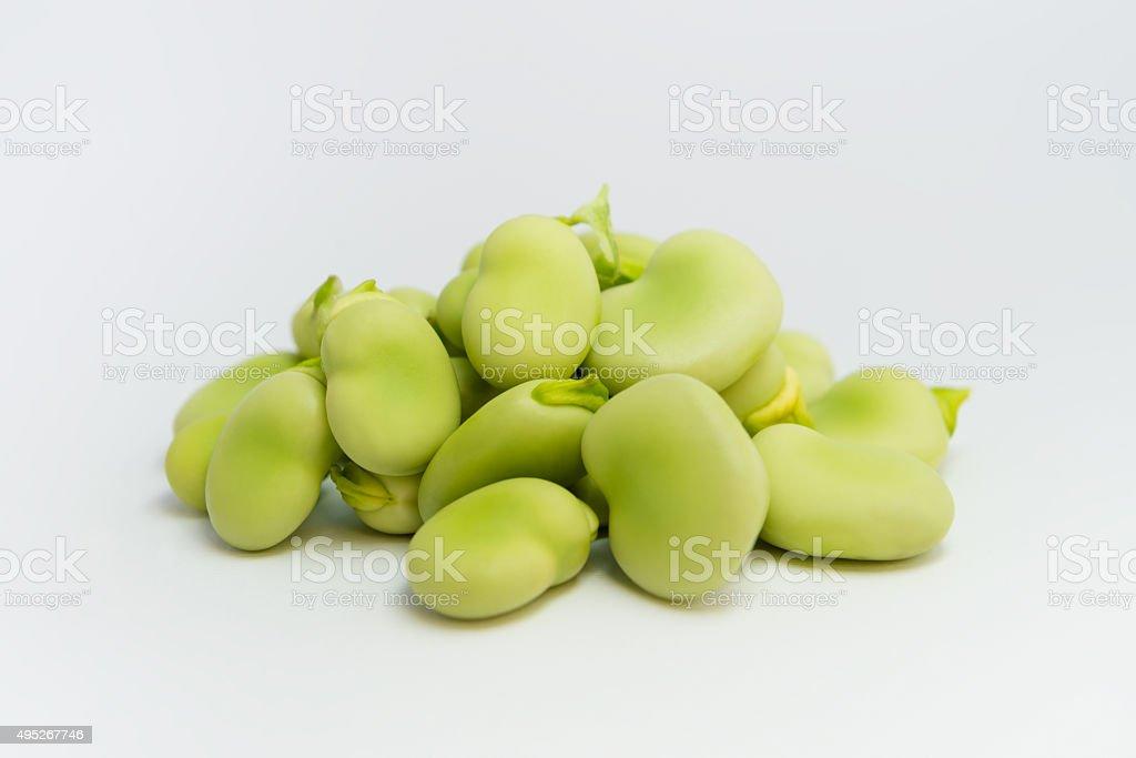 Fresh green broad beans stock photo