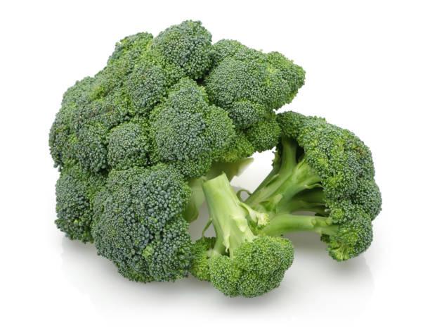 świeże zielone brokuły na białym tle - kapustowate zdjęcia i obrazy z banku zdjęć