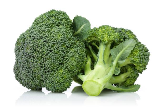 frischer grüner brokkoli auf weißem hintergrund - kreuzblütengewächse stock-fotos und bilder