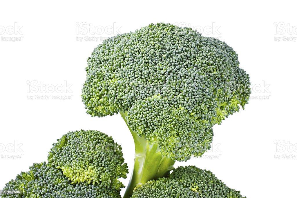 Fresh green broccoli royalty-free stock photo