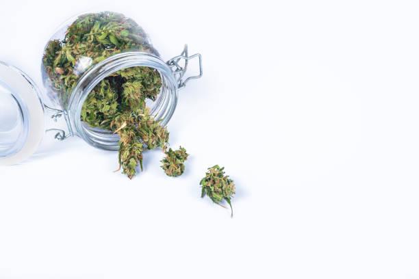Frische grüne Knospen oder Blüten von Cannabis (Marihuana) Unkraut in einem geöffneten transparenten Glas auf weißem Hintergrund isoliert. – Foto