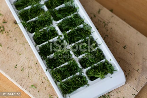 Extreme close up of filled freezer tray with fresh green dill on wooden chopping board