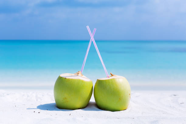 Fresh green coconut cocktails on sand stock photo