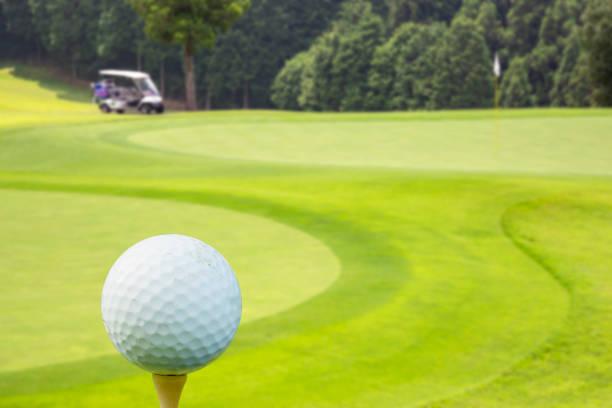 Fresh green golf course stock photo