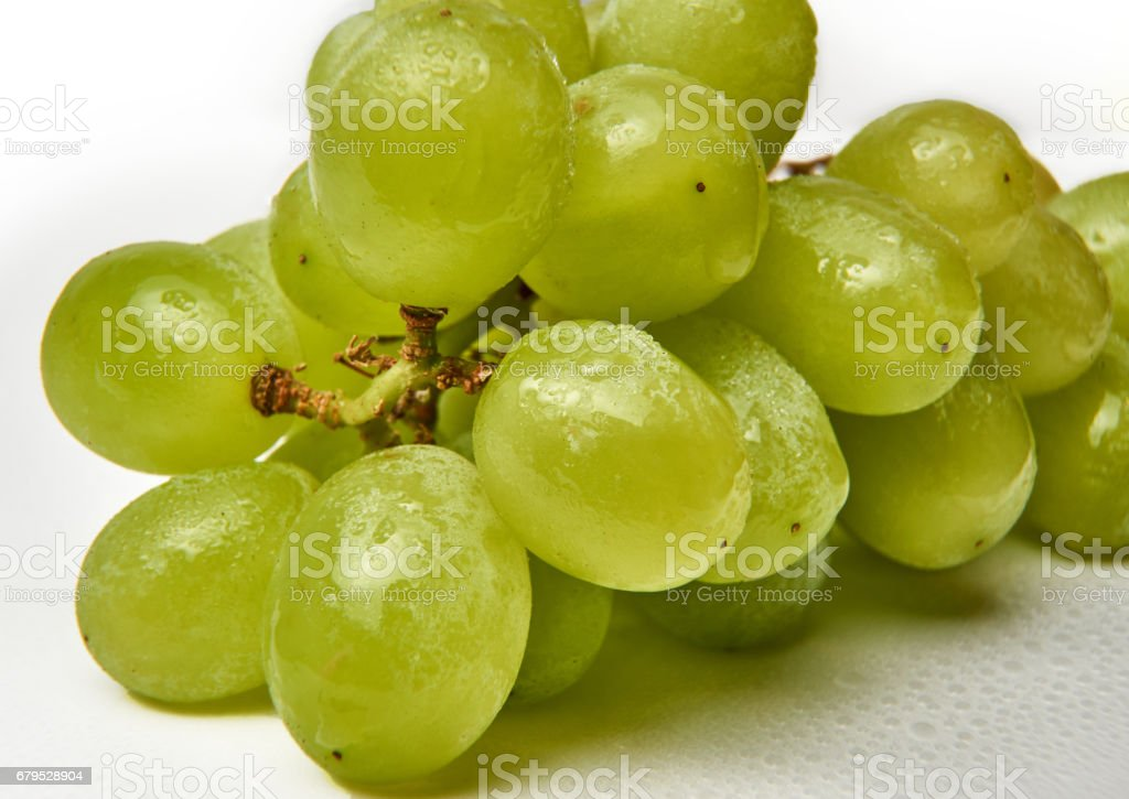 Fresh green grapes on white background with waterdrops. royalty-free stock photo