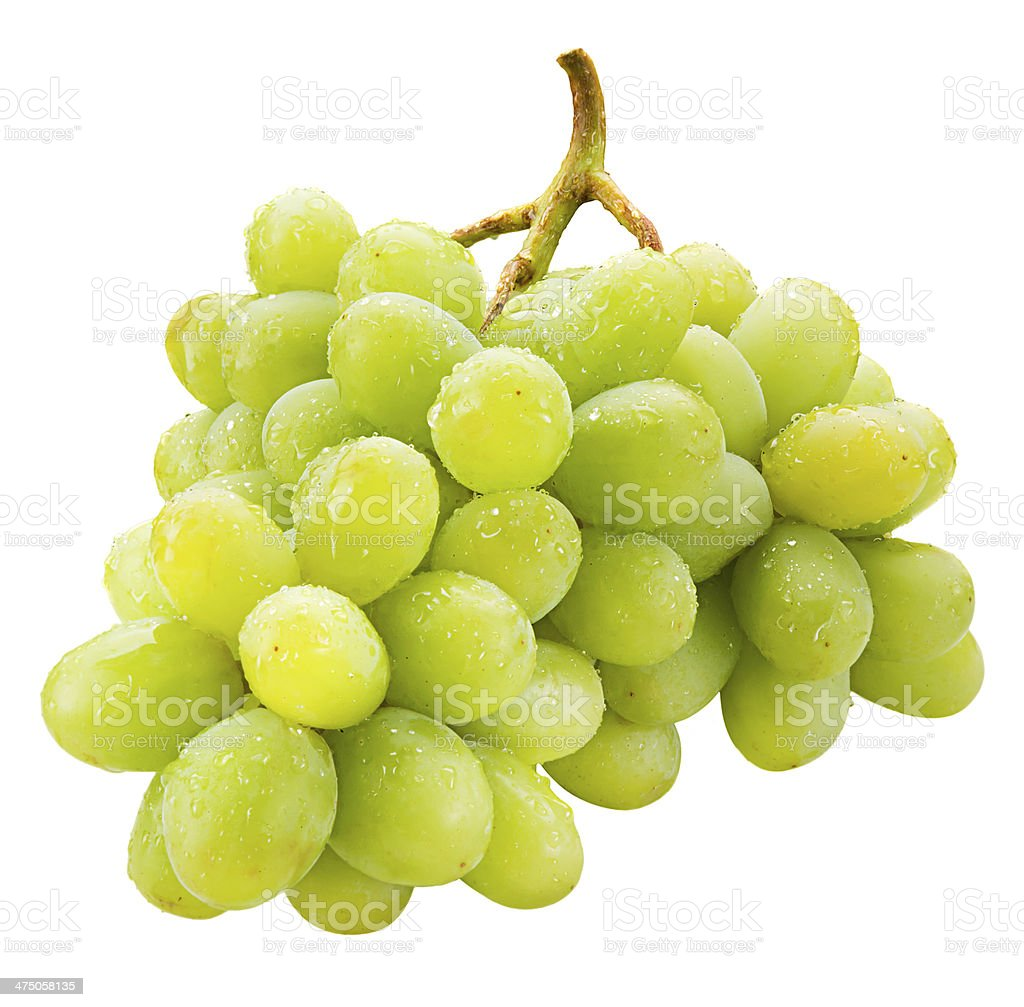 Fresh green grapes with drops Isolated on white stock photo
