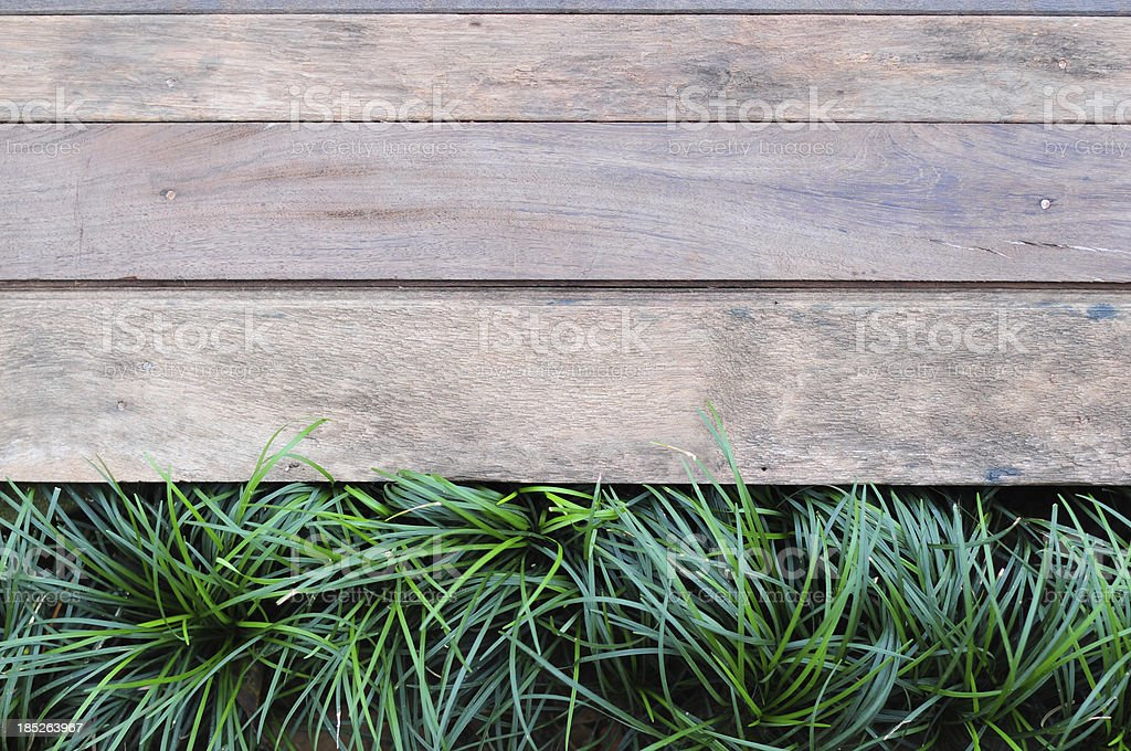 Fresh green grass on Wood background royalty-free stock photo