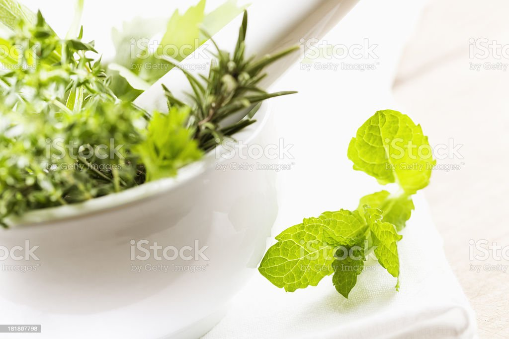 fresh green herbs royalty-free stock photo