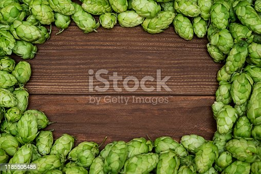 istock Fresh green hops on a wooden background. Green hop cones with wooden slate frame background 1185508485