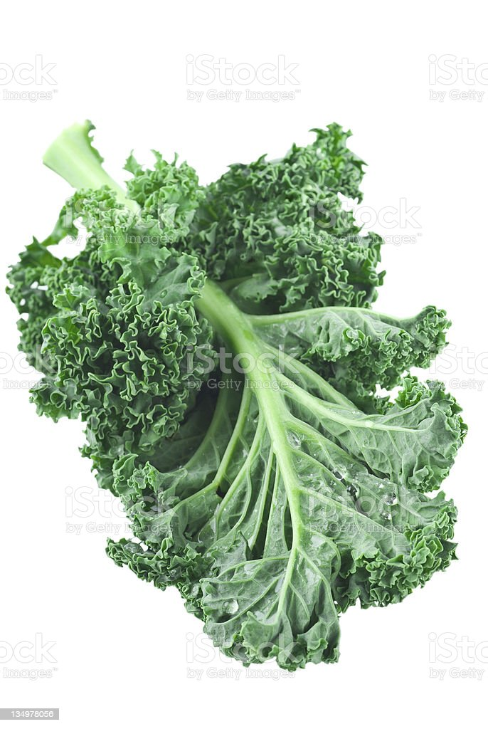 Fresh green kale isolated on white bildbanksfoto