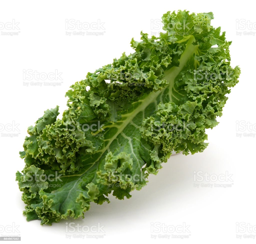 fresh green kale leaves vegetable isolated on white background stock photo