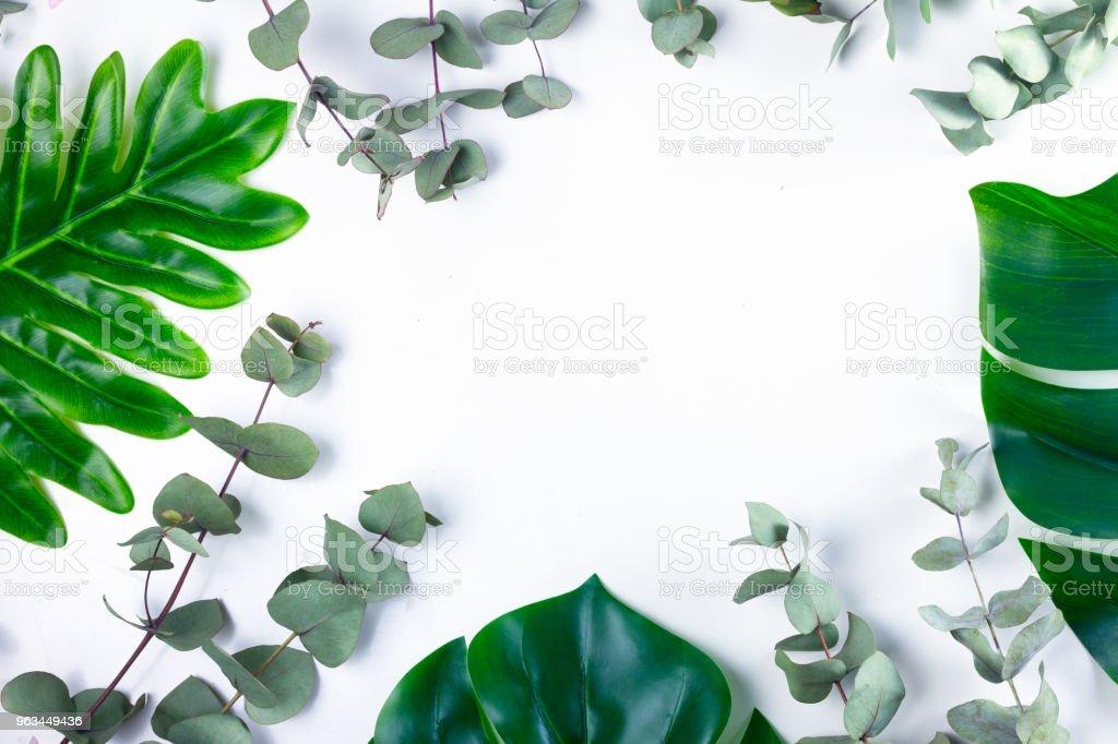 taze yaprak yeşil - Royalty-free Ağaç Stok görsel