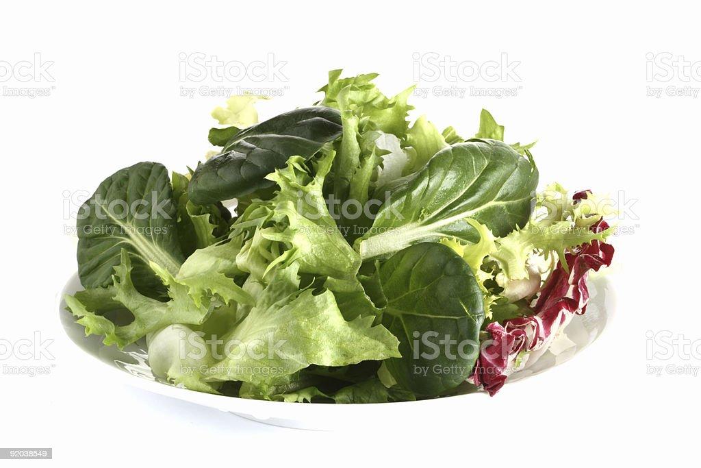 fresh green leaf salad with tatsoi on plate stock photo