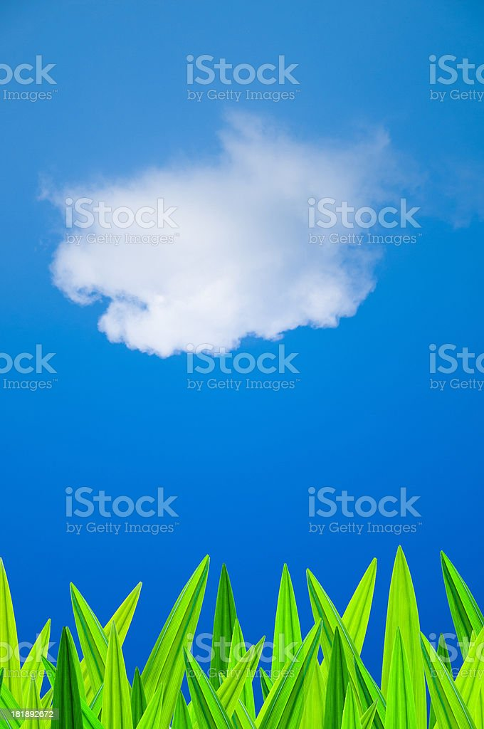 Fresh green leaves against the blue sky royalty-free stock photo