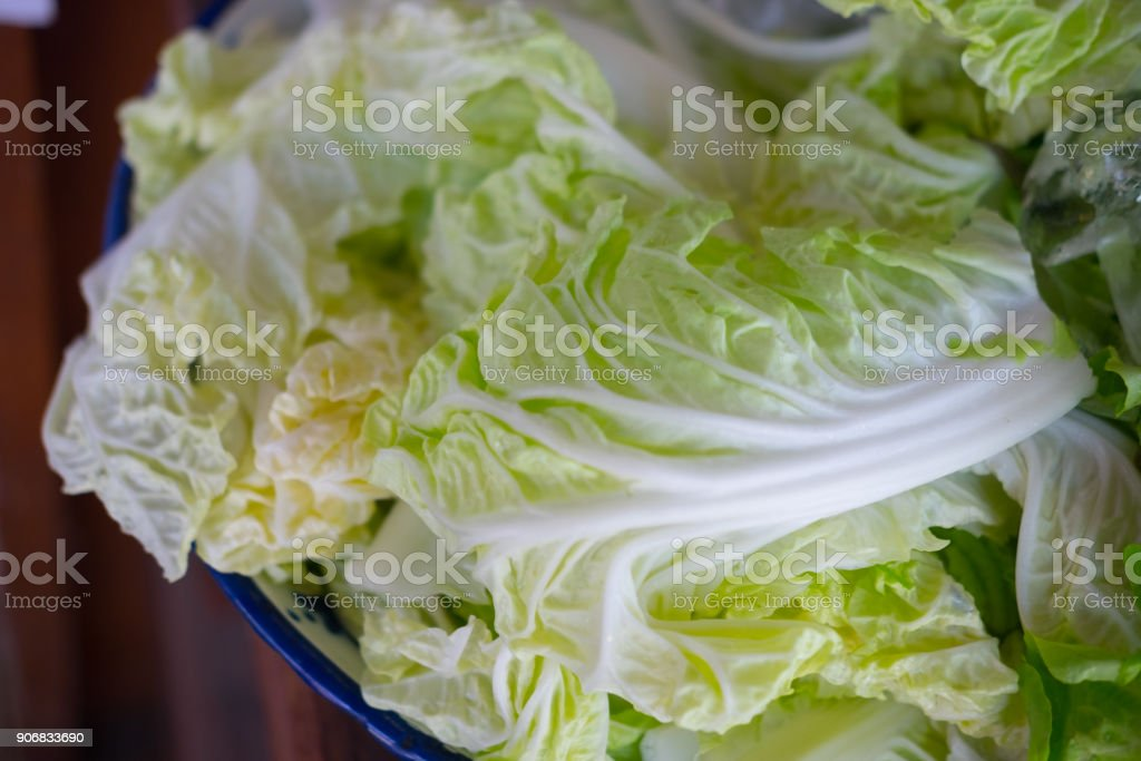 Fresh green lettuce in tray ready to eat stock photo