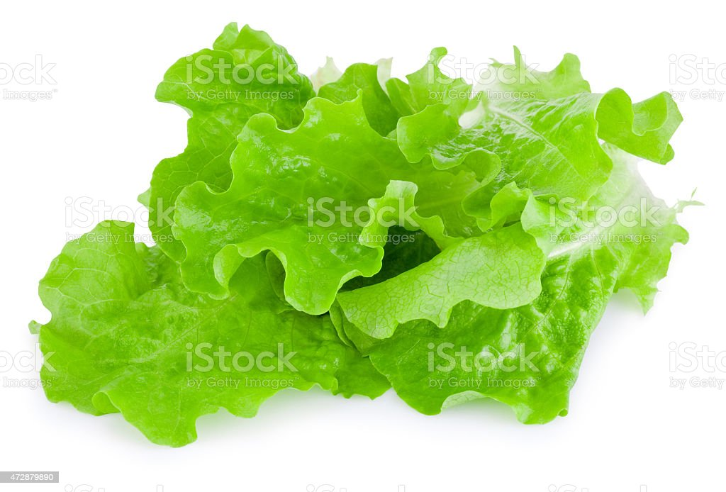 Fresh green lettuce isolated on white background stock photo