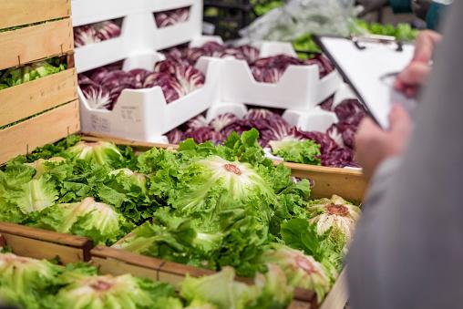 Fresh vegetables in warehouse
