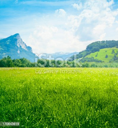 Grassland with mountains in background.