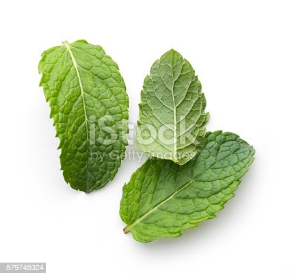 istock fresh green mint leaves 579745324