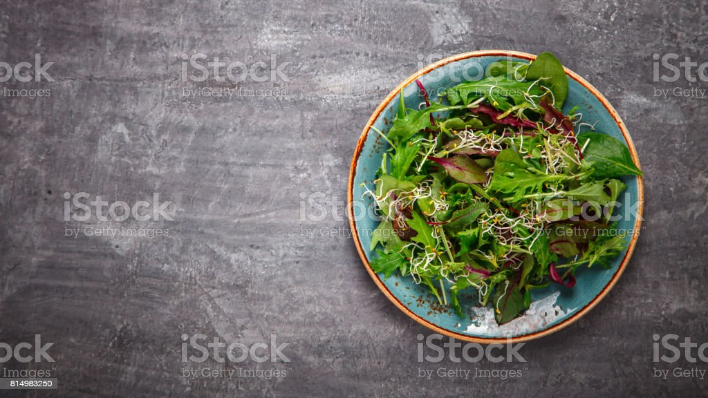 Fresh Green mix Salad with  Microgreen stock photo