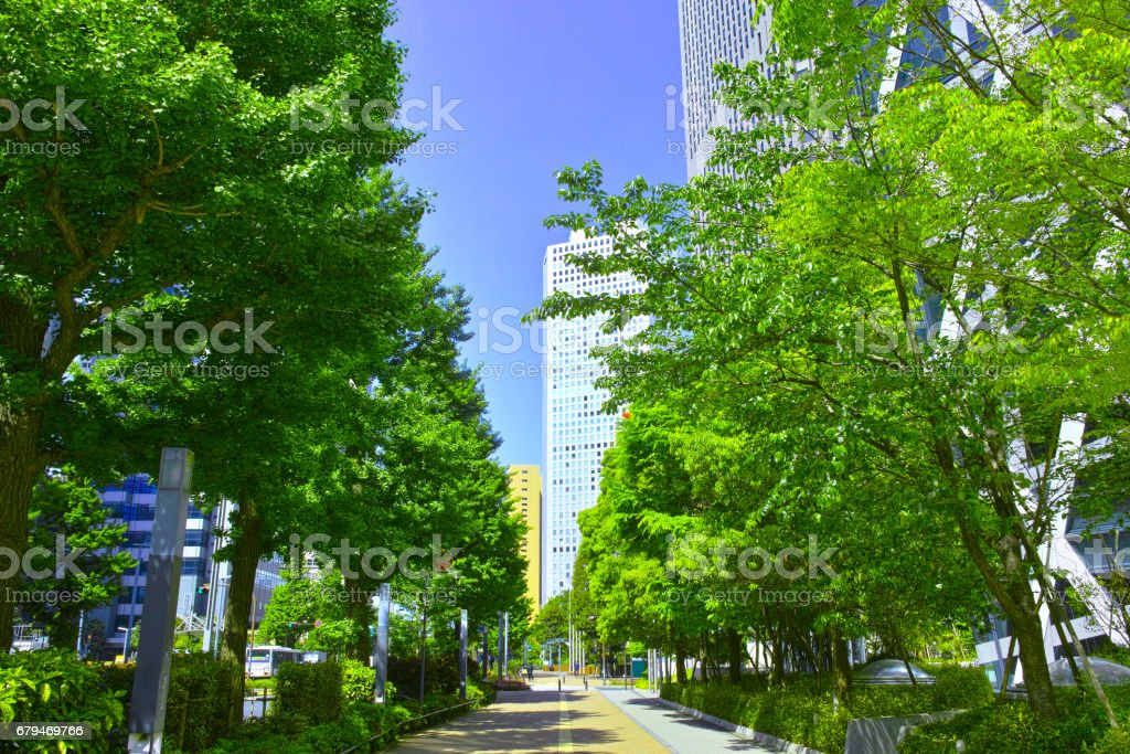 Fresh green Nishi-Shinjuku office street royalty-free stock photo