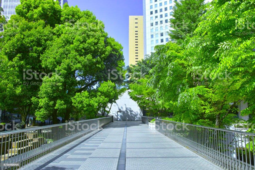 清新綠色辦公西新宿街頭 免版稅 stock photo