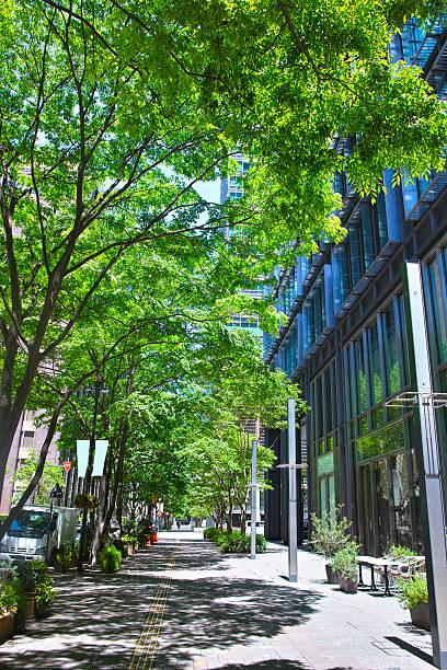 新鮮な緑のビジネス街、東京 - 緑 ビル ストックフォトと画像