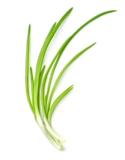 verse groene uien die op witte achtergrond worden geïsoleerd. bovenste weergave - bosui stockfoto's en -beelden