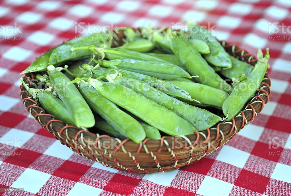 Fresh green peas in a basket royalty-free stock photo