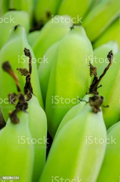 Frische Grüne Bananenbananen Bund Full Frame Stockfoto und mehr Bilder von Banane