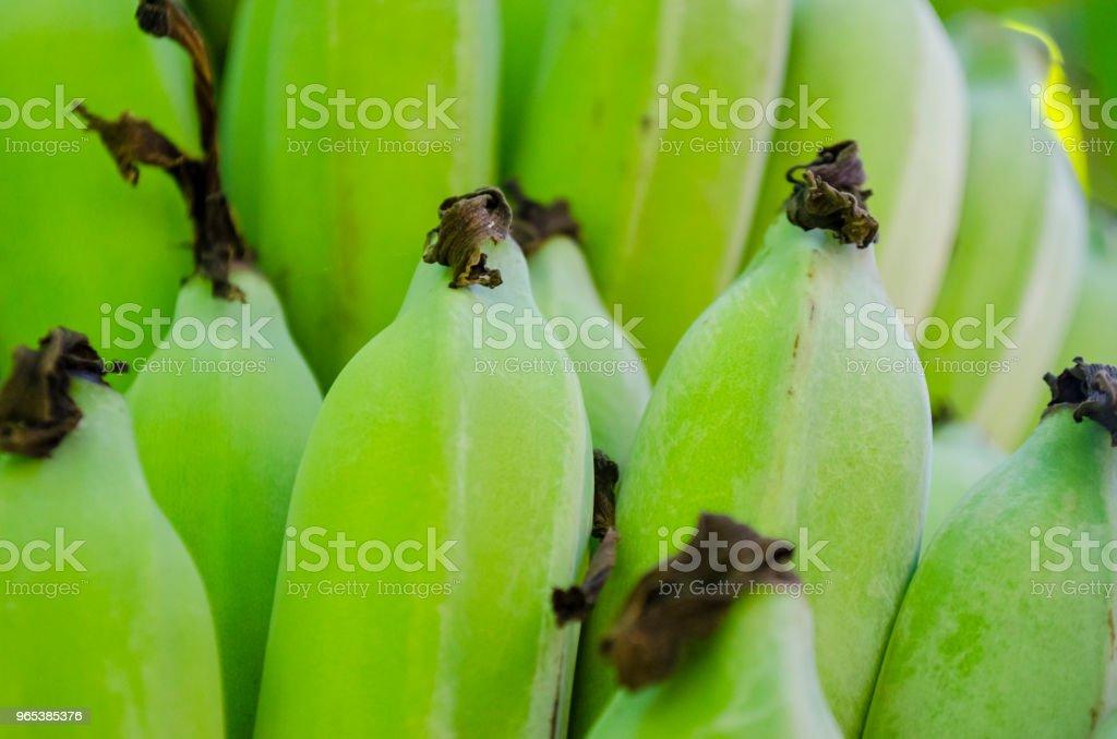Frische grüne Bananen-Bananen Bund Full Frame - Lizenzfrei Banane Stock-Foto