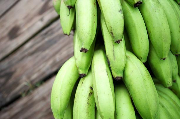 신선한 녹색 플렌틴 바나나 바나나 번치 야외 목재 배경기술 - 플렌틴 바나나 뉴스 사진 이미지