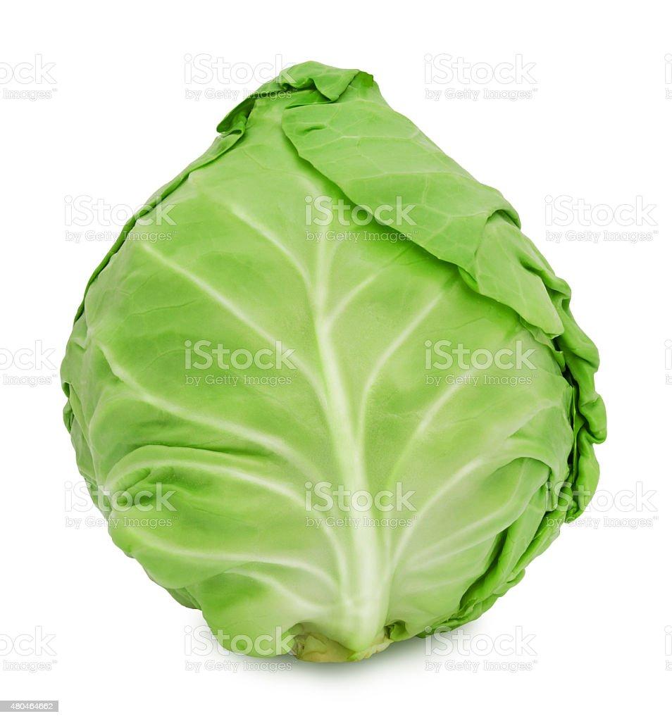 Fresh green ripe cabbage stock photo
