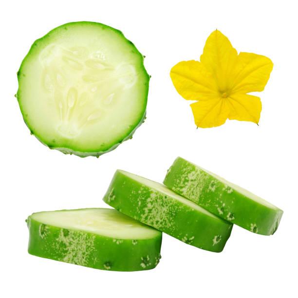 tranches de concombre mûres vertes fraîches et fleur. - en fleurs photos et images de collection