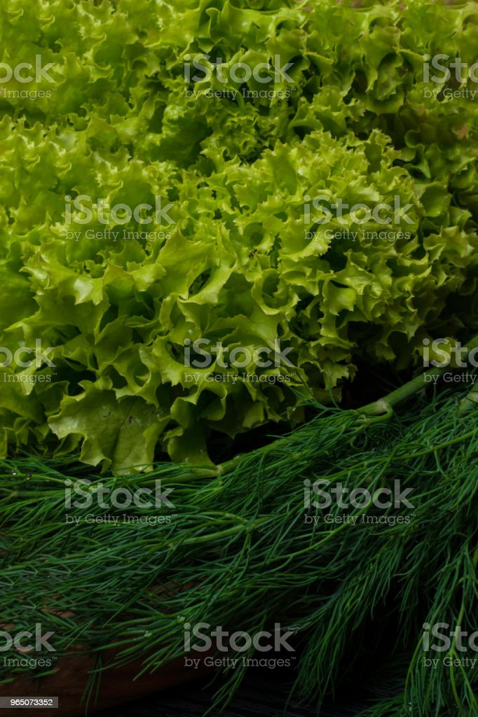 fresh green salad and dill on wood background royalty-free stock photo