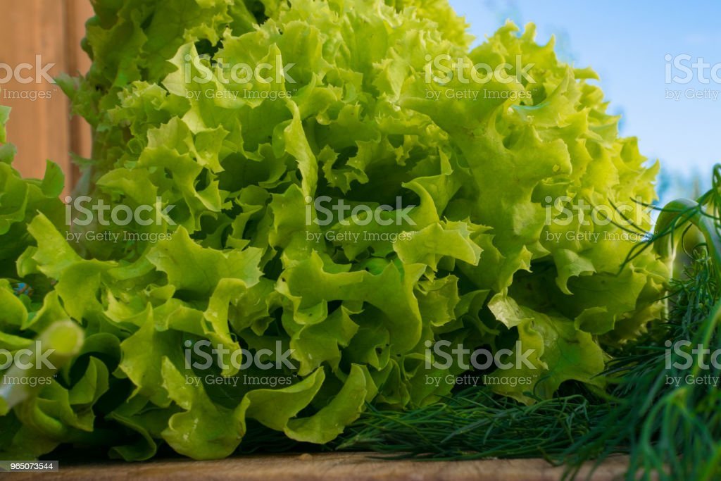 Fresh Green Salad And Dill On Wood Background Stock Photo & More Pictures of Branch - Plant Part